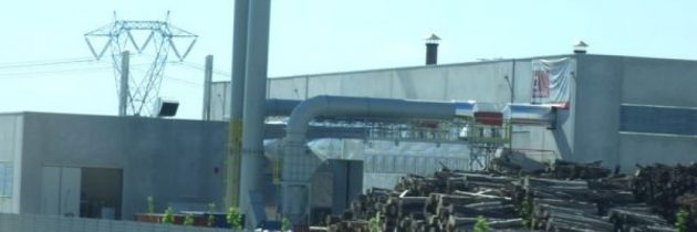 Biomasse: una questione di date!