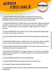 Volantino Regionali 2013 front