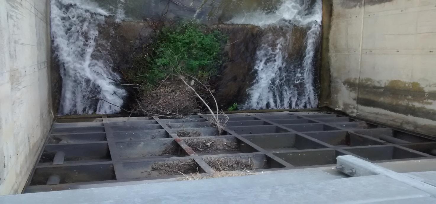Quantità di acqua restituita al fiume -foto del 21/07/2014
