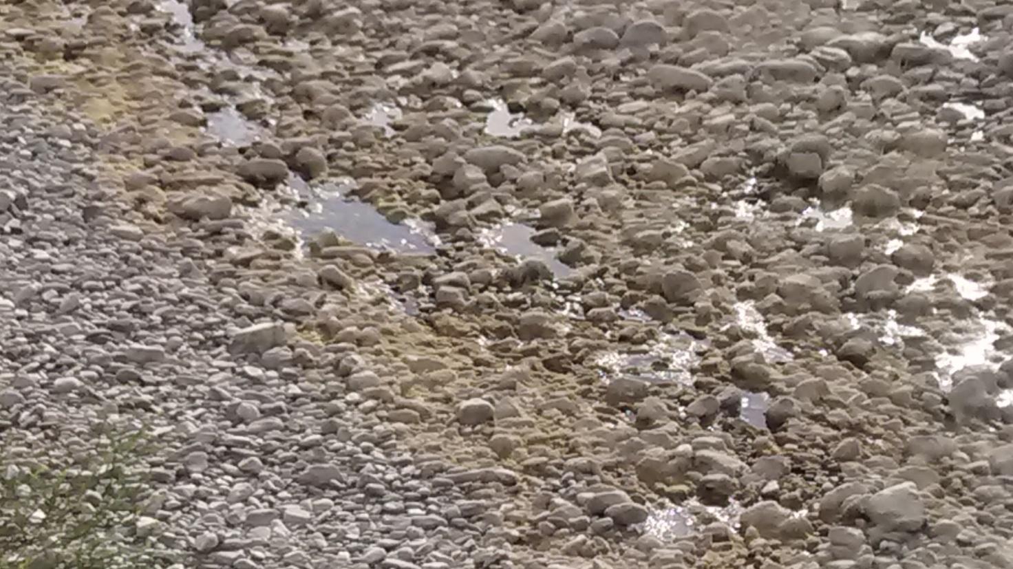 Situazione a valle dell'invaso - foto del 21/07/2014