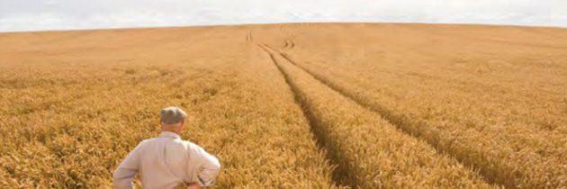 Imu agricola, la Regione si muove sotto la spinta del MoVimento 5 Stelle