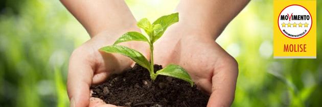 Banca della Terra, la rinascita è nelle nostre mani