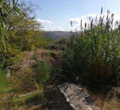 Fondi per grotte arenarie a Montenero di Bisaccia, come li stanno usando?