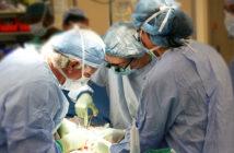 Pazienti con malattie rare e bisognosi di trapianto, Regione Molise