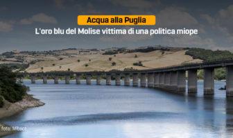 Acqua alla Puglia, Patrizia Manzo, Diga del Liscione