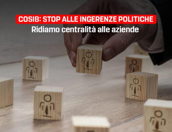 Cosib: stop alle pressioni politiche, mettiamo al centro le imprese