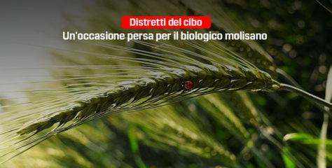 Distretti del cibo, un'occasione persa per il biologico molisano