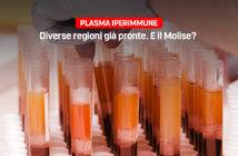 Plasma iperimmune, Primiani M5S Molise