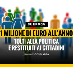 Surroga, un milione di euro all'anno tolti alla politica e restituiti ai cittadini