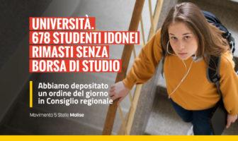 Borse di studio universita