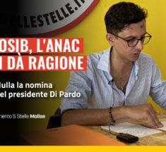 Cosib, l'Anac ci dà ragione: nulla la nomina del presidente Di Pardo