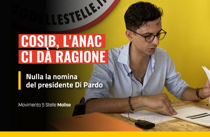Anac, illegittima la nomina di Di Pardo al Cosib